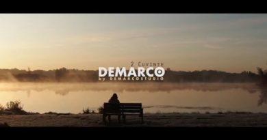 DEMARCO - 2 Cuvinte перевод песни