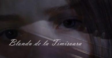 Blondu de la Timisoara - Vreau sa te scot din mintea mea | перевод