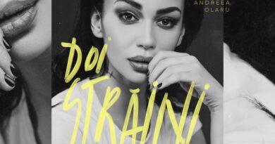 Andreea Olaru - Doi straini перевод
