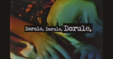 Irina Rimes - Dorule перевод