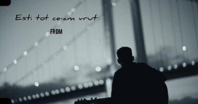 FRDM - Esti tot ce-am vrut! перевод