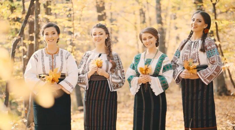Fetele din Botoșani - Hai la Botoșani! (перевод)