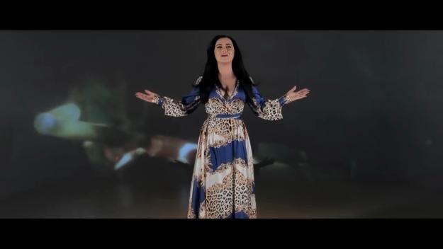Carmen de la Salciua - Dansez prin ploi / перевод